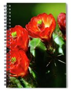 Claret Cup Cactus Spiral Notebook