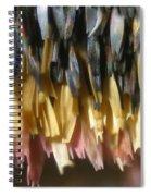 Close-up Of Luna Moth Wing Spiral Notebook