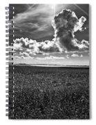 Cocodrie Marsh Spiral Notebook