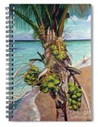 Coconuts On Beach Spiral Notebook