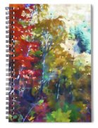 Colorful Autumn Trees In Forest Spiral Notebook