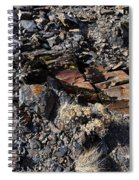 Colorful Lichens Growing On Rocks Along Monument Ridge, In The Eastern Sierra Nevadas Spiral Notebook