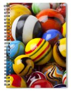 Colorful Marbles Spiral Notebook