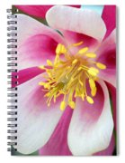 Columbine Flower 1 Spiral Notebook