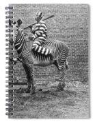 Comic Criminal Riding A Zebra Spiral Notebook