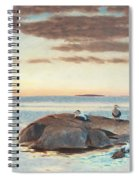 Common Eiders On A Rock Spiral Notebook