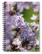 Common Purple Lilac Spiral Notebook