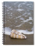 Cone Seashell On The Beach. Spiral Notebook