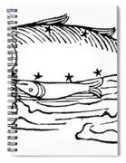 Constellation: Pisces Spiral Notebook