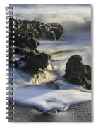 Coral Cove Park 4430 Spiral Notebook