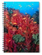 Coral Reef Scene Spiral Notebook