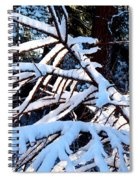 Country Solitude Spiral Notebook