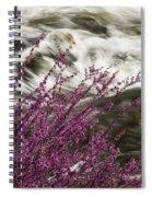 Cranberry Gulch Spiral Notebook