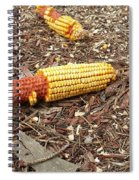 Critters Delight Spiral Notebook