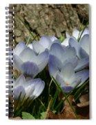 Crocus Spiral Notebook