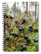 Crowberry Spiral Notebook