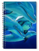 Curiosity Spiral Notebook
