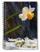Daffodil Spiral Notebook