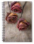 Dead Roses Spiral Notebook