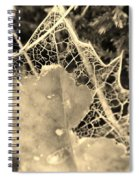 Decayed Lacing Spiral Notebook