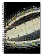 Deepwater Dab Spiral Notebook
