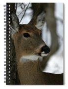 Doe Profile Spiral Notebook