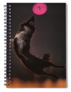 Dog Spiral Notebook