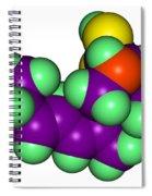 Domoic Acid Molecular Model Spiral Notebook