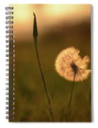 Dream Flower Spiral Notebook