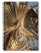 Dried Palm Fronds Spiral Notebook