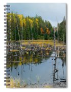 Drowned Trees Spiral Notebook