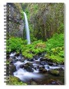 Dry Creek Falls Spiral Notebook