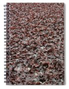 Drying Dulse Spiral Notebook