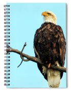 Eagle's View Spiral Notebook