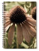 Echinacea Garden Spiral Notebook