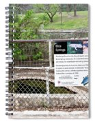 Eliza Springs Spiral Notebook