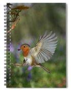 European Robin Alighting Spiral Notebook