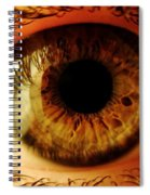 Eye Spiral Notebook