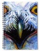 Eyes Of Owls No. 15 Spiral Notebook