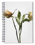 Faded Rose Flower Spiral Notebook