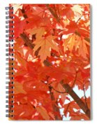 Fall Trees Colorful Autumn Leaves Art Baslee Troutman Spiral Notebook