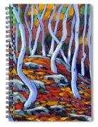 Fantaisie No 6 Spiral Notebook