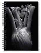 Fennel Spiral Notebook