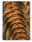 Fern Abstract Spiral Notebook