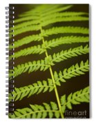 Fern Pattern Spiral Notebook