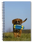 Fetching Boxer Puppy Spiral Notebook