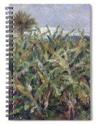Field Of Banana Trees Spiral Notebook