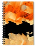 Filaments Of Sun Spiral Notebook
