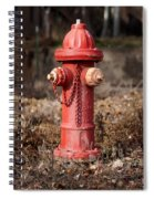Fire Hydrant #16 Spiral Notebook