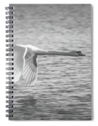 Flight Of The Swan Spiral Notebook